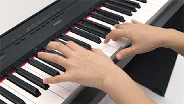 buy yamaha p 115 88 key digital piano online for at. Black Bedroom Furniture Sets. Home Design Ideas